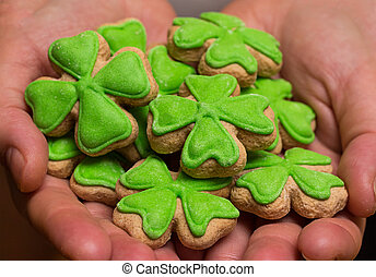 handful of cookies clover leaf green mastic in hands close-up treats feast Saint Patrick