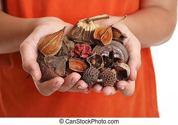 Potpourri is a scented mixture of dried, naturally fragrant plant materials such as seeds, dried flowers, bark, nuts, leaves and cones.