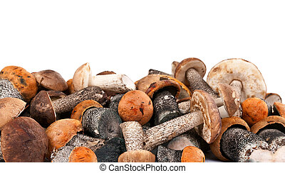 handful of fresh wild mushrooms