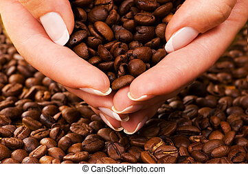 Handful of premium coffee beans