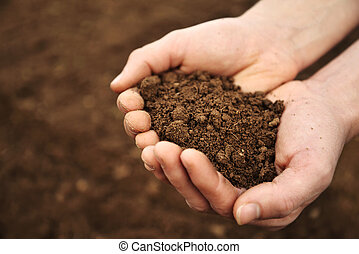 Handful of Rich Brown Soil - Hands holding soil from an ...