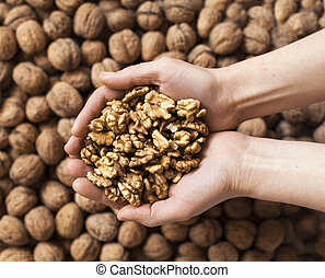 Handful of walnuts kernels against the walnuts in shell background