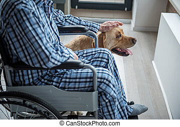 Handicapped man petting the hound at home