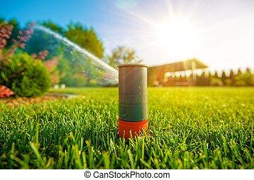 handling, gräsmatta sprinkler