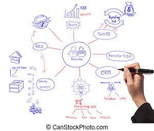 handlowe kobiety, rysunek, idea, deska, od, handlowy, proces, diagram