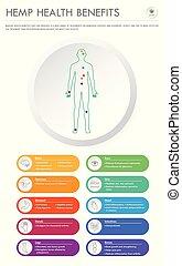 handlowy, infographic, zdrowie, korzyści, pionowy, konopie