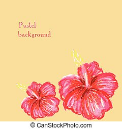 handmade drawing pastel chalks  hibiscus background
