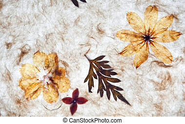 handmade paper background with textures