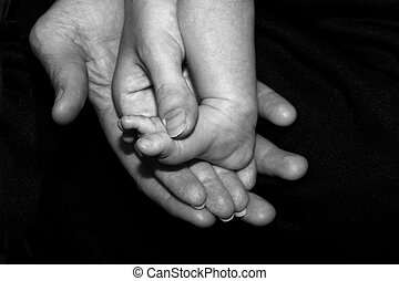 Hands and baby foot - Caring hands hold a small newborn's...