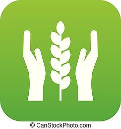 Hands and ear of wheat icon digital green