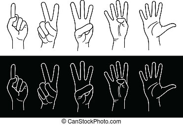 hands and fingers - Counting Hands from one to five. Vector