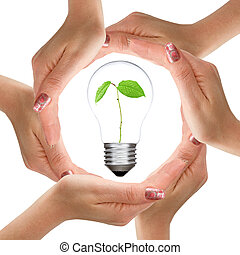 Hands and light bulb with plant inside