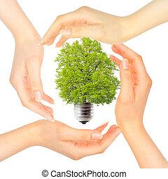 Hands around the green light bulb