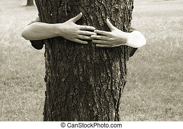 hands clasping the tree - preserve the nature