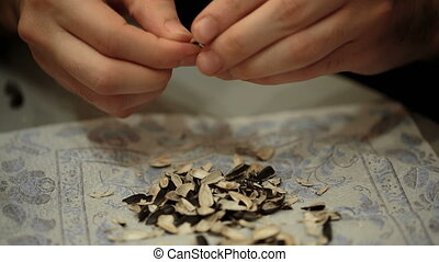 Hands clean fried sunflower seeds close-up. hulls of...