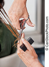 Hands Cutting Wet Hair In Salon