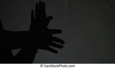 Hands gesture shadow like a bird on white background