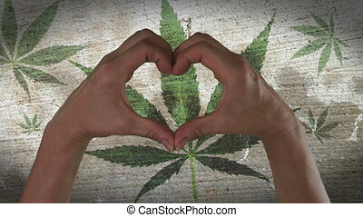 With a stylized marijuana leaf background an anonymous person's hands being held in the form of a heart, symbolizing love for weed.