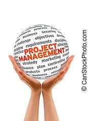 Project Management - Hands holding a Project Management 3d...