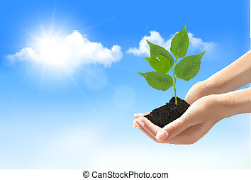 Hands holding a young plant. Vector.