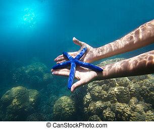 hands holding big blue starfish