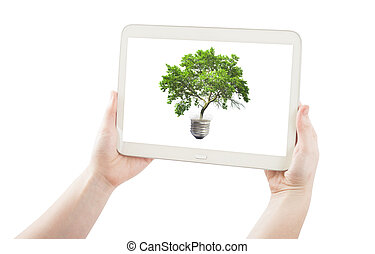 hands holding pc tablet and green tree in bulb isolated on white.