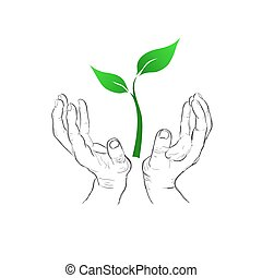hands holding plant, eco concept