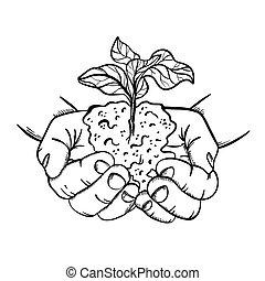 HANDS HOLDING PLANT In Sketch Style Vector Illustration Set