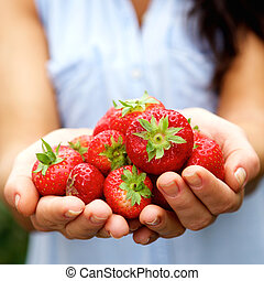 Hands holding ripe strawberries