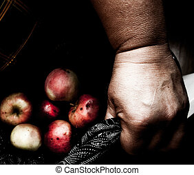 Hands holding rotten apples in lap