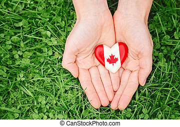 hands holding round badge with red white canadian flag maple leaf, on green grass