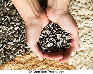 Hands holding sunflower seeds against sesame, sunflower and pumpkin seeds background. Healthy food.