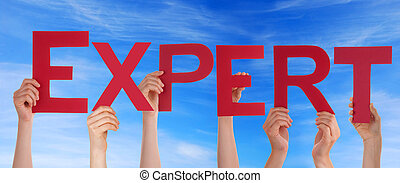 Expert in front of the Sky - Hands Holding the Word Expert...