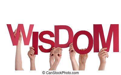 Hands Holding Wisdom