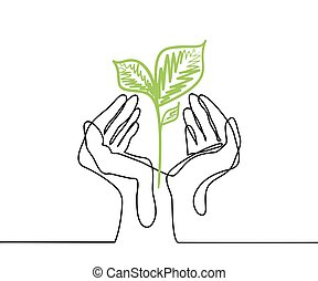 Hands holds a living green plant seedling.