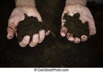 Hands in Dirt