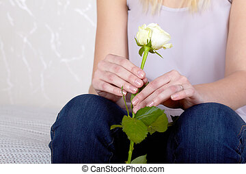Hands of a girl holds the white rose.