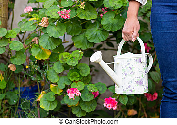hands of a woman holding a watering can in a garden