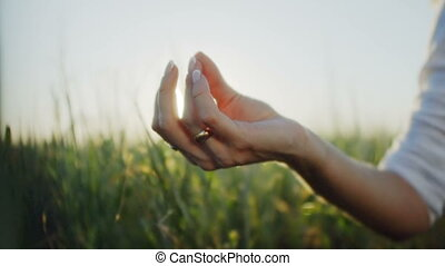 Hands of a woman in the Lotus position at sunset