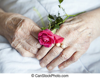 Hands of elderly lady with rose - Series of photos: 92 years...