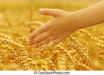 Hands of little girl