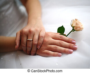Hands of the bride with a ring and a small rose