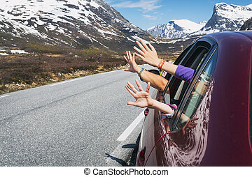 hands of the car