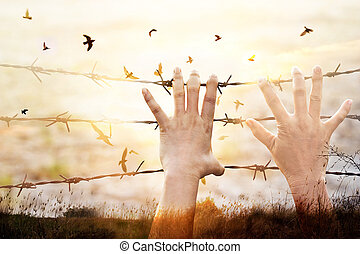 Hands of wire with bird flying on sunset sky background