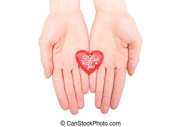 Hands of woman holding red heart. White background