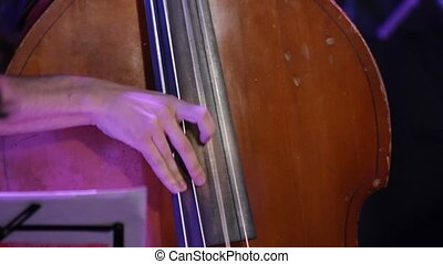 Hands playing double bass at a jazz concert closeup
