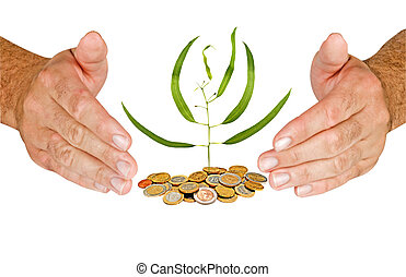 Hands protecting tree growing from pile of coins