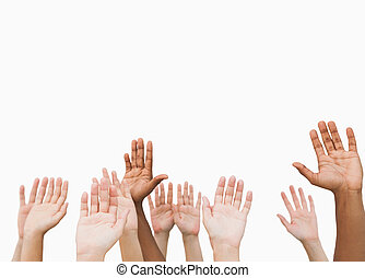 Hands raising in the air on white background