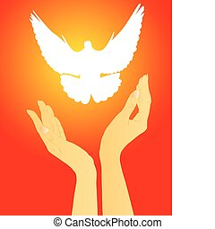 hands releasing a white dove on a red background