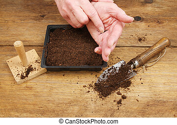 Hands sowing seeds
